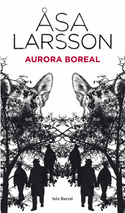 - Aurora boreal