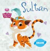 portada_princesas-palace-pets-teacup-y-sultan_editorial-planeta-s-a_201411281316.jpg